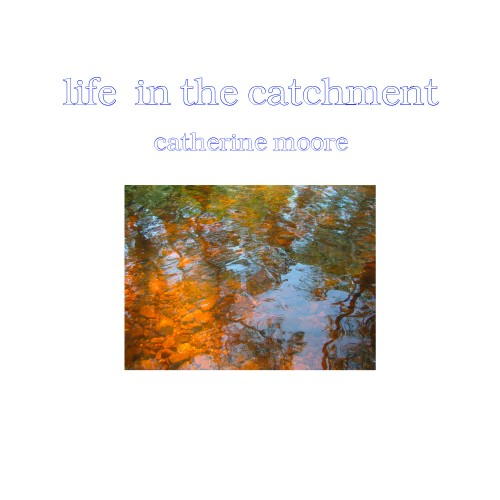 Life in the Catchment - Catherine Moore