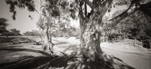 Darling River, Karoola Reach I - Stephen Best